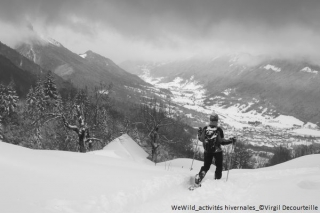 Disturbance of wildlife in winter: developing increased awareness among outdoor sports practitioners in the Alps